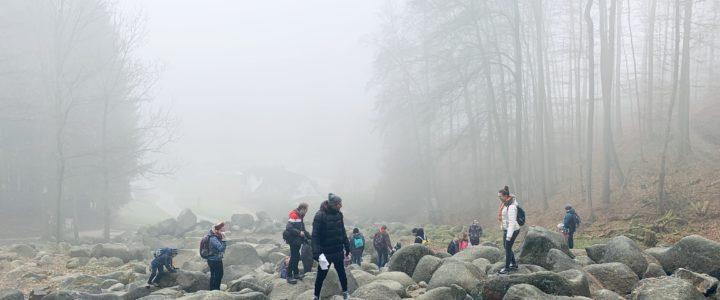 Gemeinsamer Jahresanfang am Felsenmeer