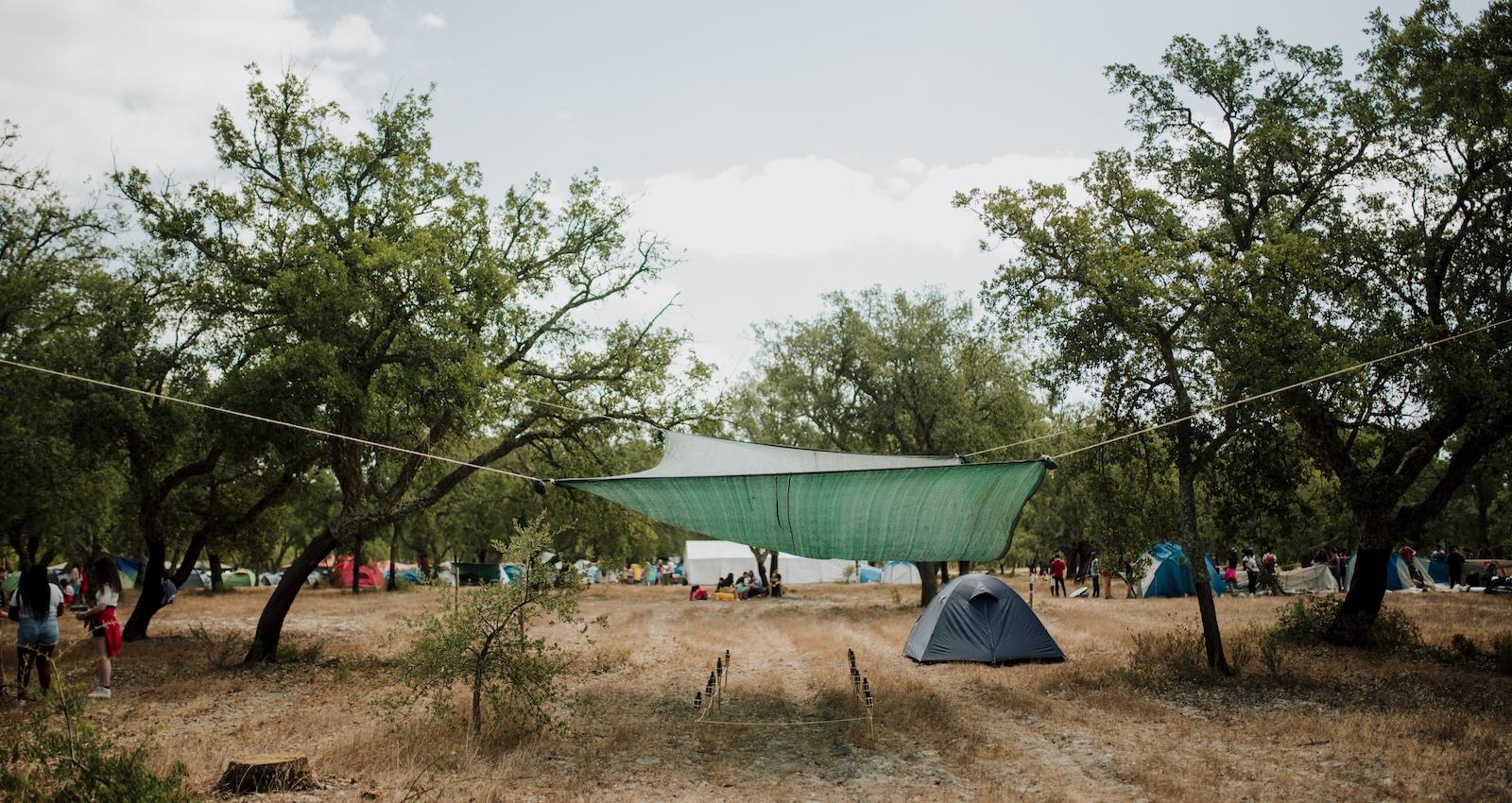 Zeltlager, Wanderungen, Abzeichen